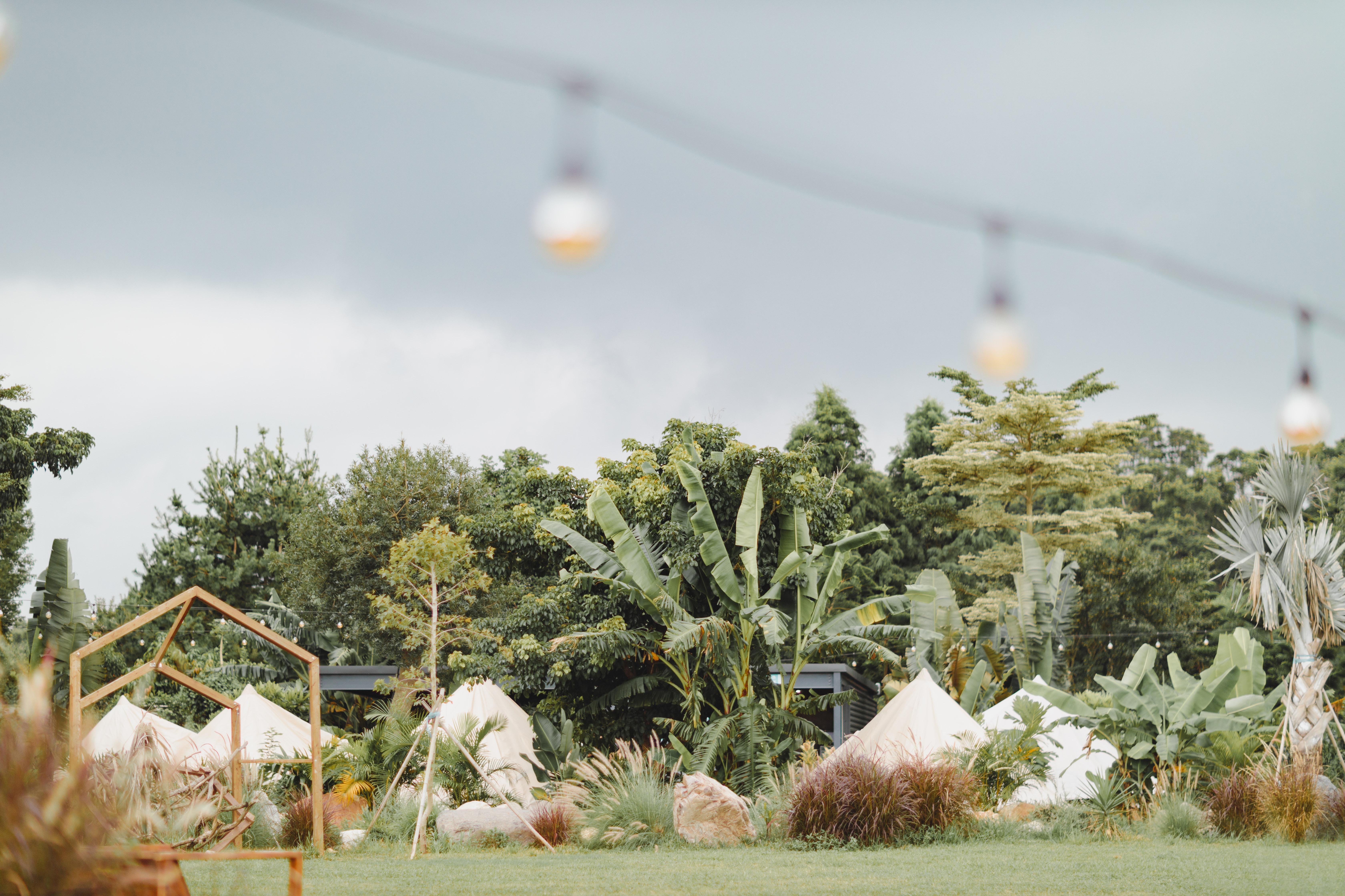 苗栗卓蘭・自然圈 LoFi Land|一泊三食有溫泉!空手來純享受的無裝備豪華露營,農野採集、手作體驗、美式燒烤…